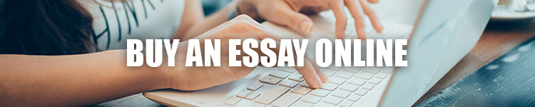 buy an essay online